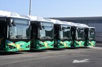 Экологически чистые автобусы для жителей Хайфы иКрайот